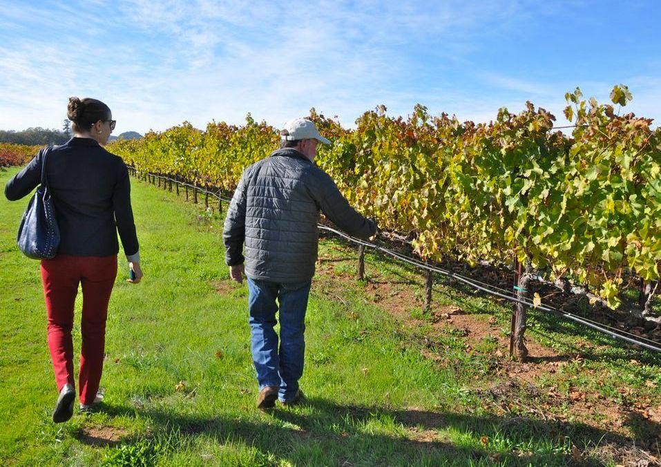 Membership - WineAmerica offers three types of membership.