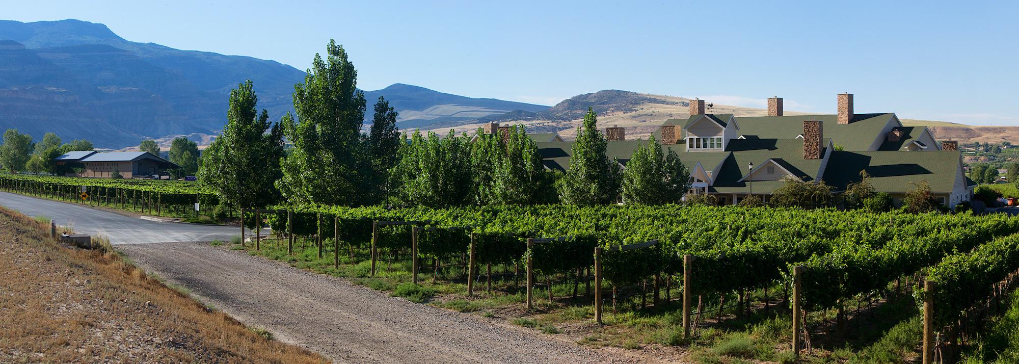Wine Country Inn - Courtesy of Marc Hoberman